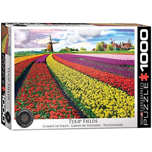 EuroGraphics- Tulip Field-Netherlands Puzzle da 1000 Pezzi, 6000-5326