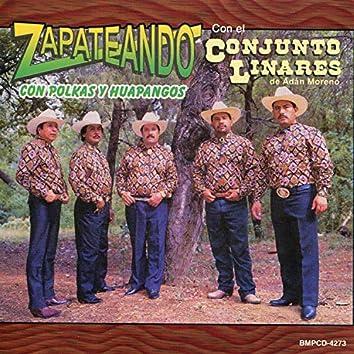 Zapateando Con Polkas Y Huapangos