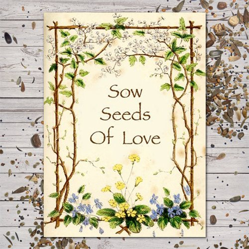 """Set of 25 Butterfly Garden Seed Packet Favors (F03)""""Sow Seeds of Love"""""""