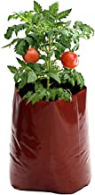 Rochfern Grow Bag,Extra Large,100% Virgin Polyethylene, (60 x 34 x 20Cms.) UV Treated (6)