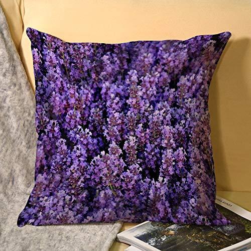 Norfolk Lavender Standard Zippered Housewife Pillowcases45x45CM