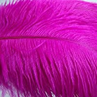 KOLIGHT 100ピースダチョウの羽薔薇 30-35 cm天然羽結婚式、パーティー、ホーム、毛の装飾