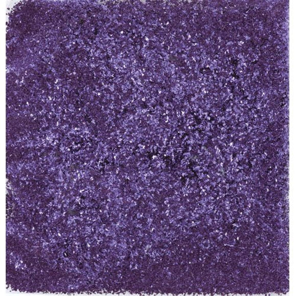 窓を洗う読むリーズピカエース ネイル用パウダー シャインフレーク #711 江戸紫 0.3g