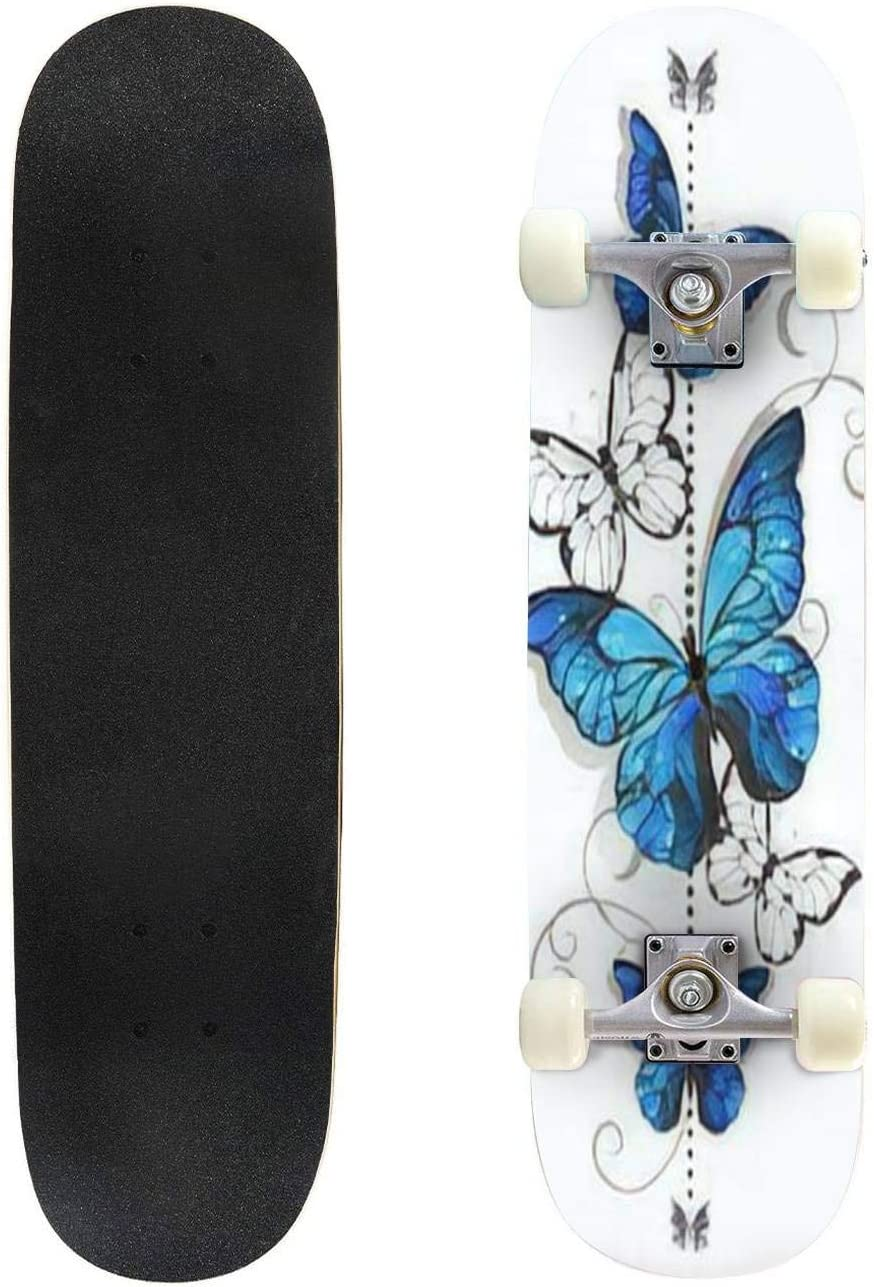 Set of Different Butterflies Outdoor 安い Compl 信用 31