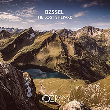 The Lost Shepard