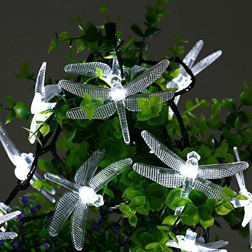 Libélula Luces, EONANT 20FT / 6M 30 Luces Solares de la Secuencia del LED con 2 Luces de los Modos Impermeabilizan para al Aire Libre, Jardín, Decoraciones de la Navidad (Blanco)