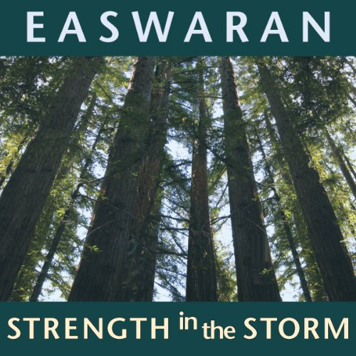 Strength in the Storm cover art