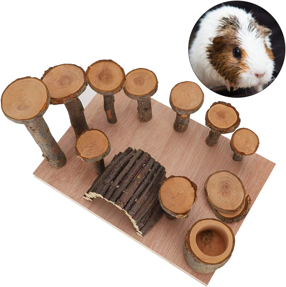 Clearance SALE! Limited time! Jacksing Hamster Chew Toys San Antonio Mall Set Natural Guinea Pig