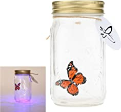 Best real butterfly in a jar Reviews