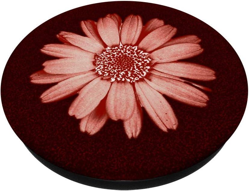 Support et Grip pour Smartphone//Tablette avec un Top Interchangeable Fleur de Marguerite Rose-Or Fonc/é PopSockets PopGrip