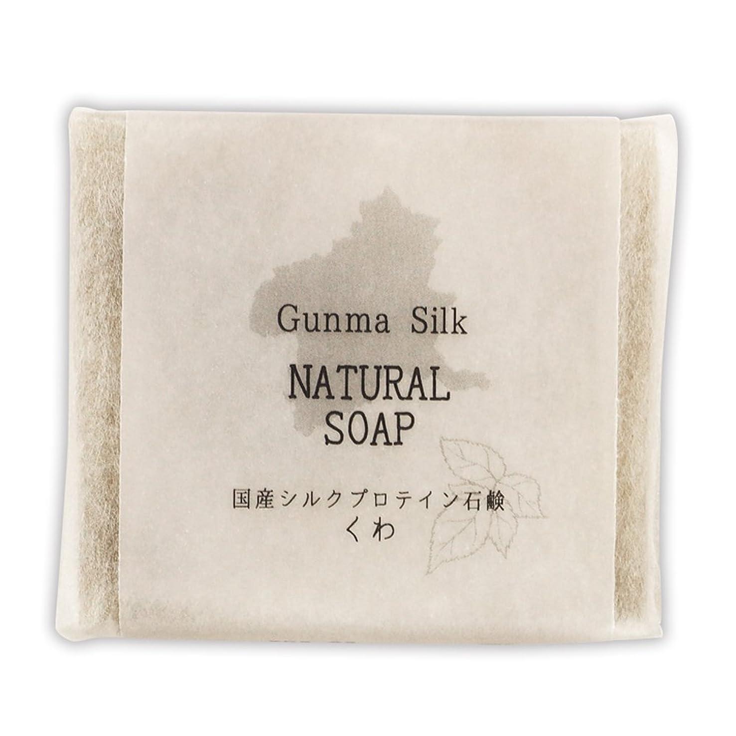 パトワ保持文房具BN 国産シルクプロテイン石鹸 くわ SKS-03 (1個)