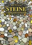 Steine am Ostseestrand - Rolf Reinicke
