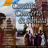 Cantata Cto & Sta: Bach & His German Contemps