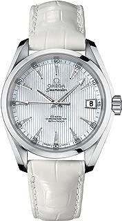 Seamaster Aqua Terra Stainless Steel 38.5mm Diamond Watch 231.13.39.21.55.001