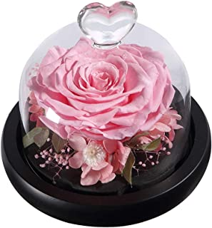 ANLUNOB Handmade Enchanted Rose Forever Rose – Anniversary Day Gift Preserved Rose – Birthday Gift Fresh Flowers - Beauty ad The Beast Rose for Girlfriend - Thanksgiving Gifts New Year Gifts
