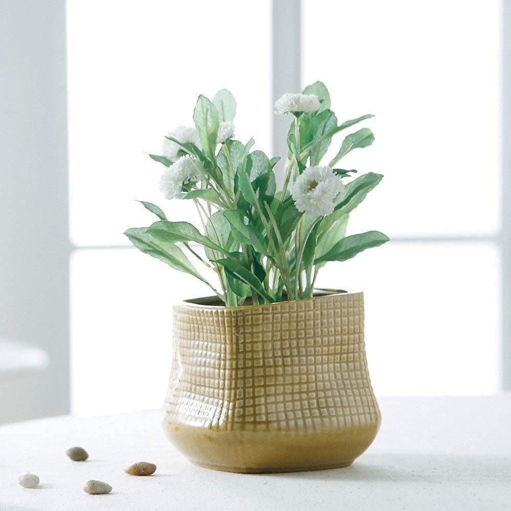 BUNCC Weekly update Flower Pot Decoration Plant Ais Wall Complete Free Shipping Pots Container Window