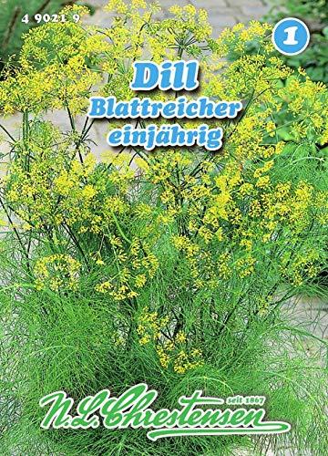 Dill, Gewöhnlicher, Blattreicher einjährig N.L.Chrestensen Samen 490219-B