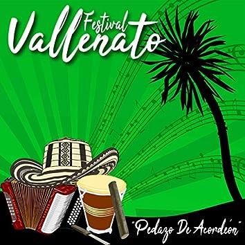 Festival Vallenato / Pedazo de Acordeón