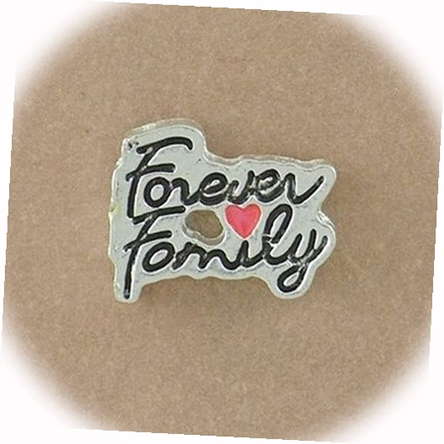 New Forever 5% OFF Max 79% OFF Family with Heart Silver Charm 9mm for Floating Memo