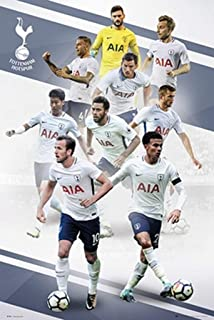Tottenham Hotspur - Soccer Poster/Print (The Players - Season 2017/2018) (Size: 24 inches x 36 inches)