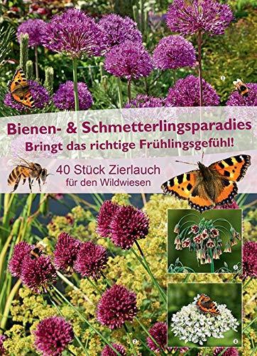 mgc24 Bienen- & Schmetterlingsparadies Zierlauch, bunte Blumenzwiebelmischung aus farbenfrohen Frühjahrsblüher, 40 Stück
