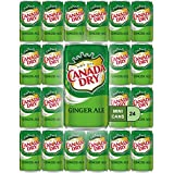 Canada Dry Ginger Ale Mini Soda Cans, 7.5 oz Soft Drinks Bulk Snacks Pack, Small Refrigerator & Snack Pantry Drink 24 Count Beverage Kitchen Supplies