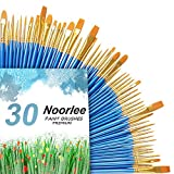 Noorlee 3 Pack Paint Brush Set, 30 pcs Nylon Hair Brushes for Acrylic Oil Watercolor Painting Artist Professional Painting Kits