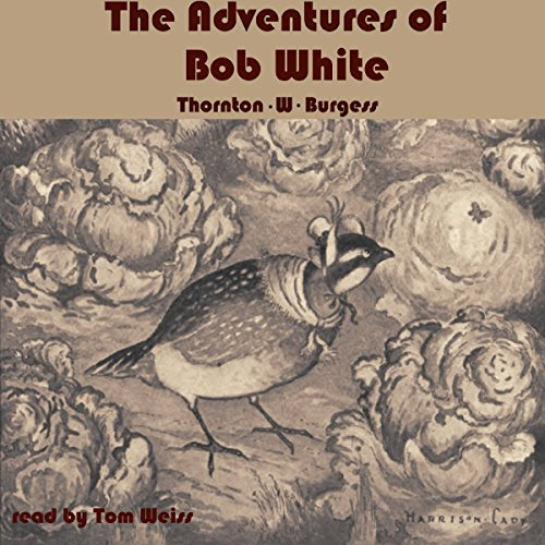 The Adventures of Bob White cover art