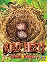 Bird Nests (Nature s Engineers)