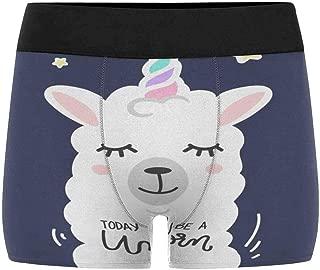 Men's Boxer Briefs Underwear(XS-3XL)