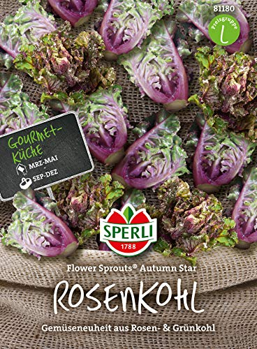 81180 Sperli Premium Rosenkohl Samen Flower Sprouts | Neuheit | Mischung aus Rosenkohl und Grünkohl | Rosenkohl Saatgut | Kohl Samen