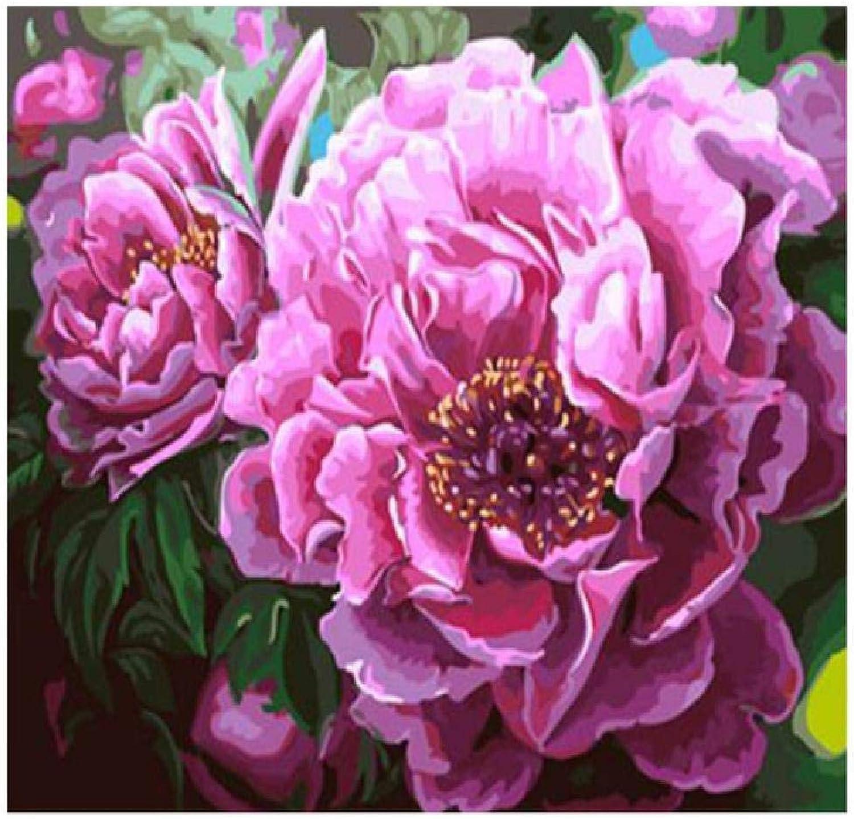 más vendido XCSXCSHUA Pintura Digital Digital Digital Floración de Flores, 80X100cm. Pintura de Arte de Parojo Digital Hogar Decoración de Parojo Obra Sin Marco  están haciendo actividades de descuento