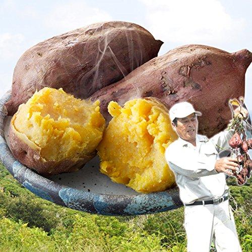 さつまいも 安納芋 鹿児島・種子島産 大きさ無選別 訳あり 家庭用 10kg まとめ買い