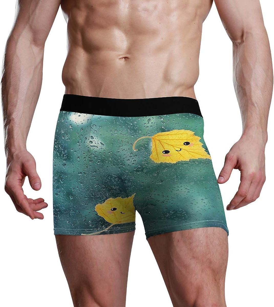 Mens Boxer Briefs Underwear Autumn Yellow Leaves On Wet Window Trunks Underwear Short Leg Boys