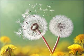 Best yellow dandelion painting Reviews