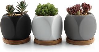 T4U 6.3CM Cerámico Moderno Dado Diseño Maceta Suculenta/Macetas de Cactus Envase Plantadores con Bandeja de Bambú - Todo Color Conjunto de 3