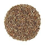 Eneldo Semillas Especias Organicas Frescas - Ideal Para Cocinar - Semillas D'eneldo 200g