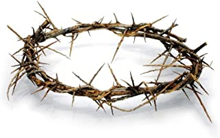 Bethlehem Gifts TM Authentic Jesus Biblical Crown of Thorns from The Holy Land (11-12