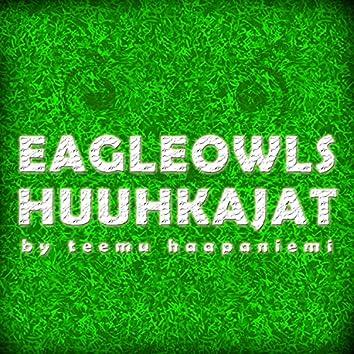 EagleOwls (Huuhkajat)