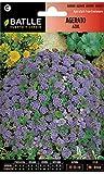 Semillas de Flores - Agerato Azul - Batlle