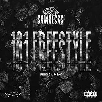 101 Freestyle