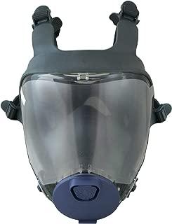 moldex full face mask