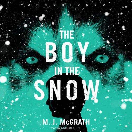 The Boy in the Snow audiobook cover art