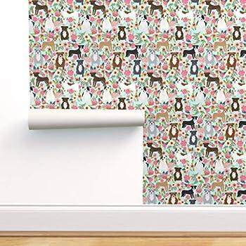 pitbull puppy wallpaper