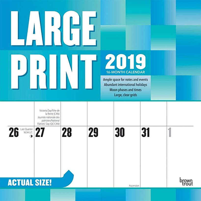 Large Print Calendar 2019 Set - Deluxe 2019 Large Print Wall Calendar with Over 100 Calendar Stickers (Large Print Gifts, Office Supplies)