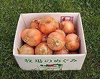 玉ねぎ 玉ネギ 北海道の有機玉ねぎ 10kg 無農薬 有機JAS 箱根牧場 産地直送 甘い 柔らかい お得な10キロ