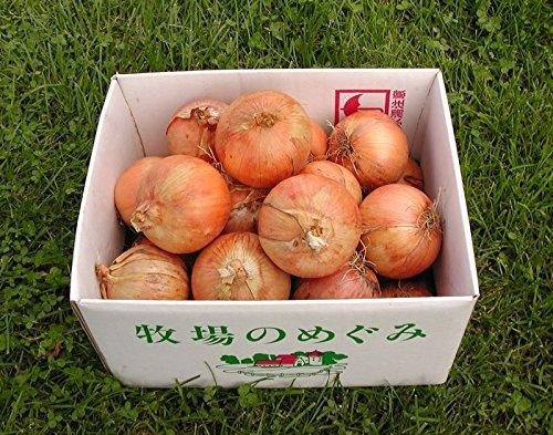 北海道 箱根牧場の有機玉ねぎ5kg 無農薬 有機JAS 甘い 旨い ホックホク シチュー、カレー、煮物に最高
