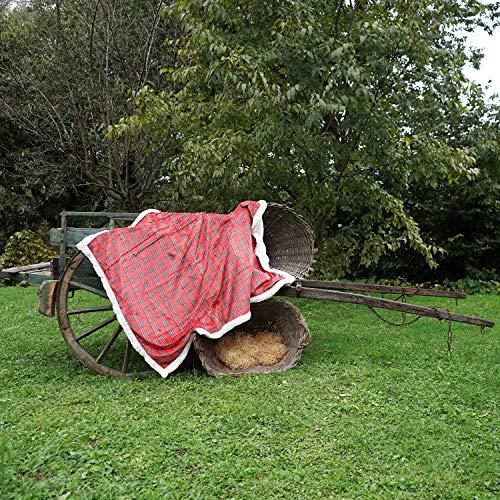 Banzaii Plaid Pile da Divano 130x160 cm – Coperta in Morbida Microfibra per Letto e Divano Scozzese Rosso
