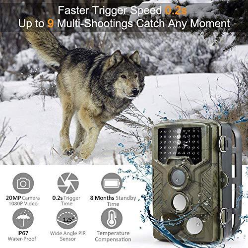 COOLIFE 20MP 1080P HD Caméra de Chasse Caméra de Surveillance Étanche 49 LEDs Grand Angle 125 ° De Vision Nocturne 25m Traque IR Caméra de Jeu Nocturne Infrarouge