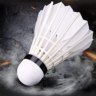 Feather Badminton ShuttleCocks (Pack of 10), by Arya Enterprises